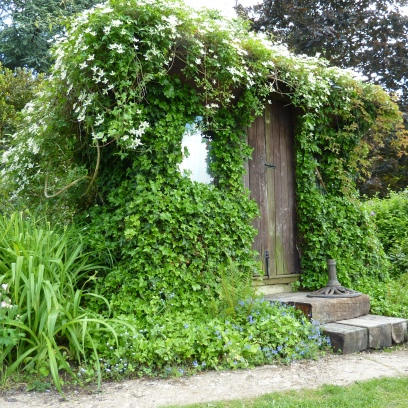 How to hide an ugly shed