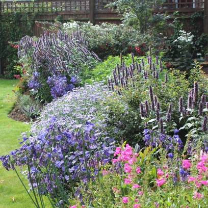A new border for a client in Reigate